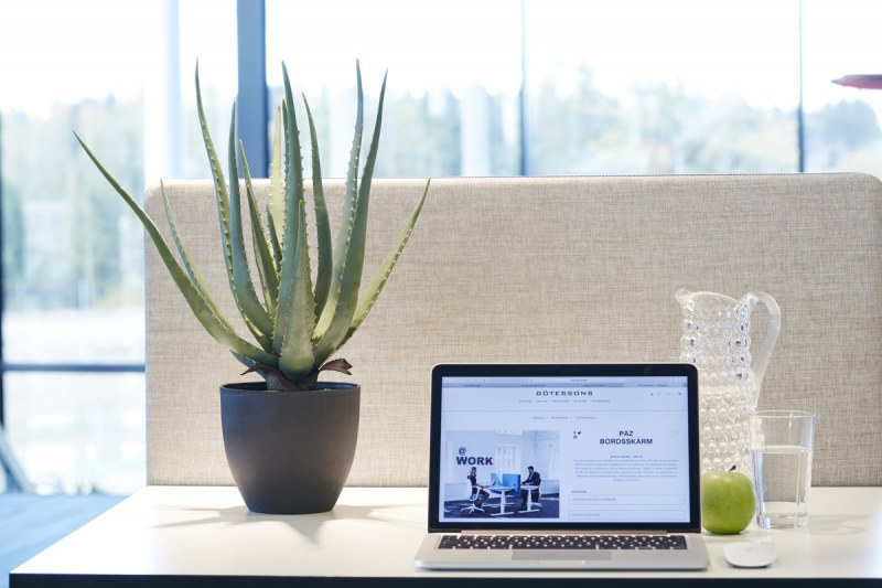 Götessons Aloe Vera inkl. Schwarzem Topf H550mm Kunstpflanze