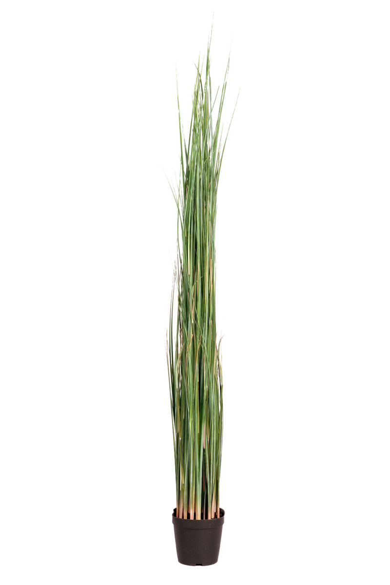 Götessons Grass im Topf H1300 Kunstpflanze